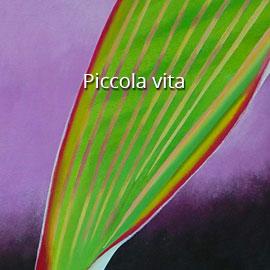 Piccola_vita2_P